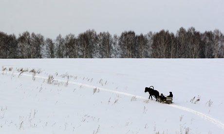a-horse-drawn-sleigh-in-s-007